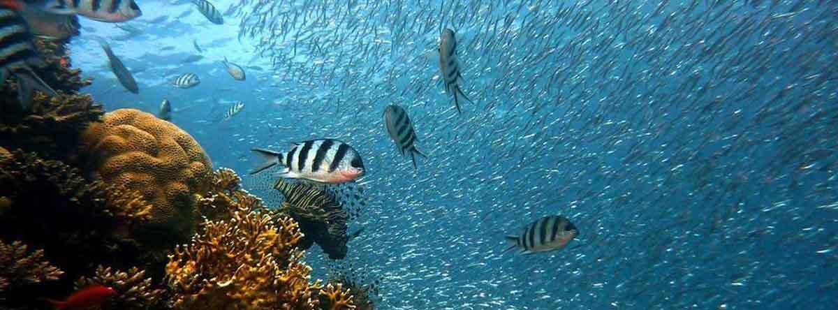 Aktivität-in-Punta-Cana