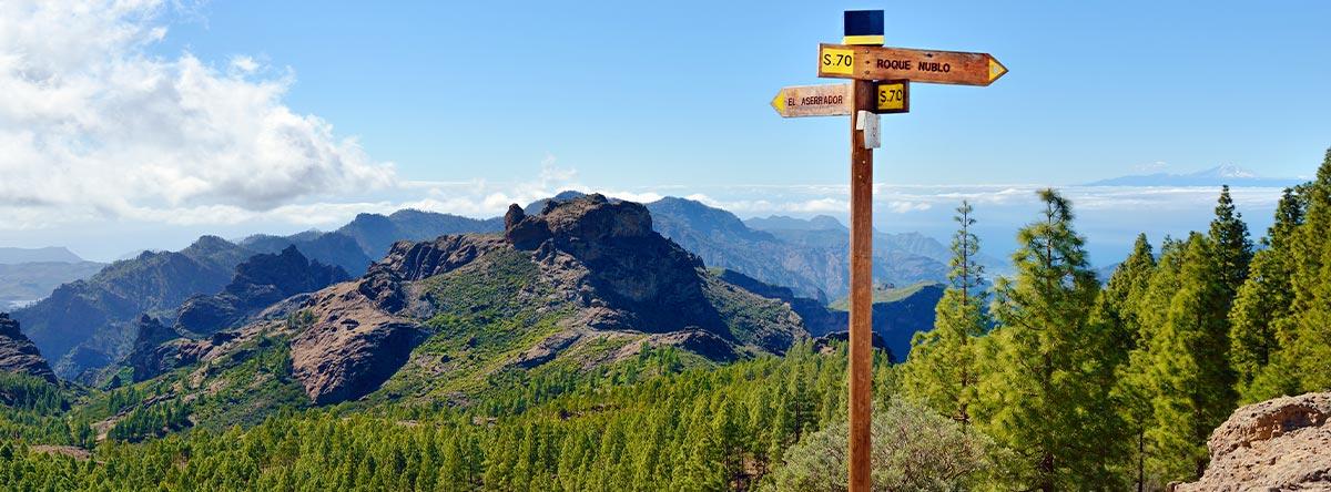 Las-mejores-actividades-y-excursiones-que-puedes-hacer-en-Gran-Canaria