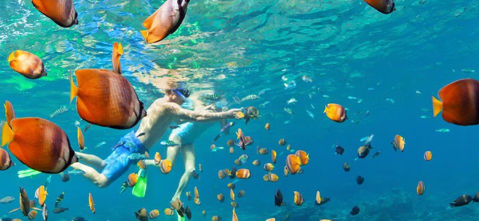 Snorkel-en-Punta-Cana-(3)
