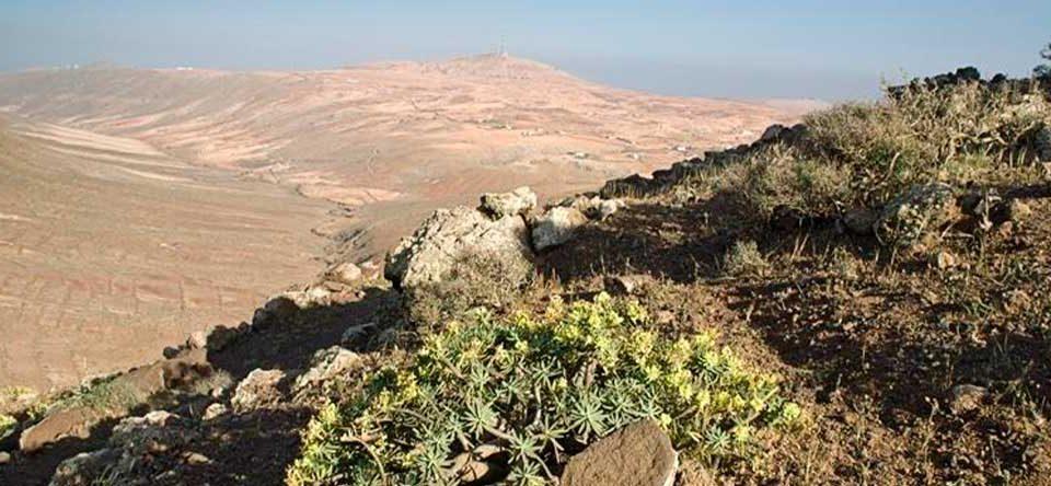 sendero-y-mirador-de-Vallebrón-en-Fuerteventura-2